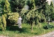 Vác, miniatűr sorházkert a belvárosban